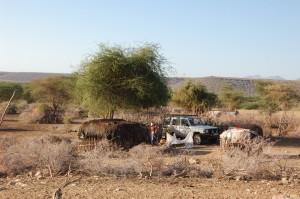 140929-1-lagarama-car-huts